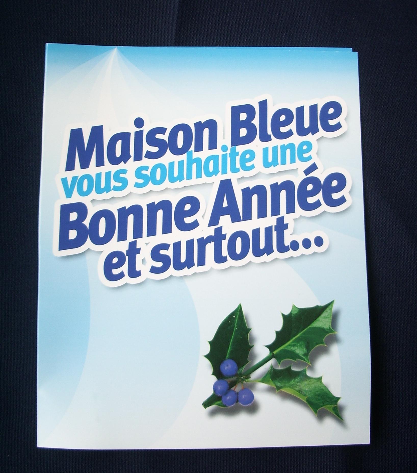 VOEUX MAISON BLEUE 2007