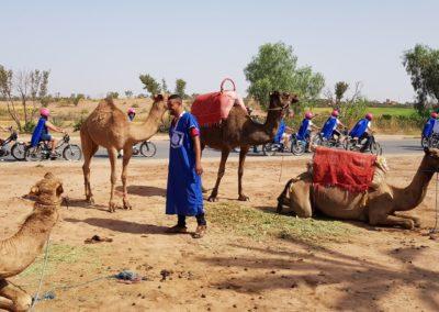 La Meule Bleue à Marrakech